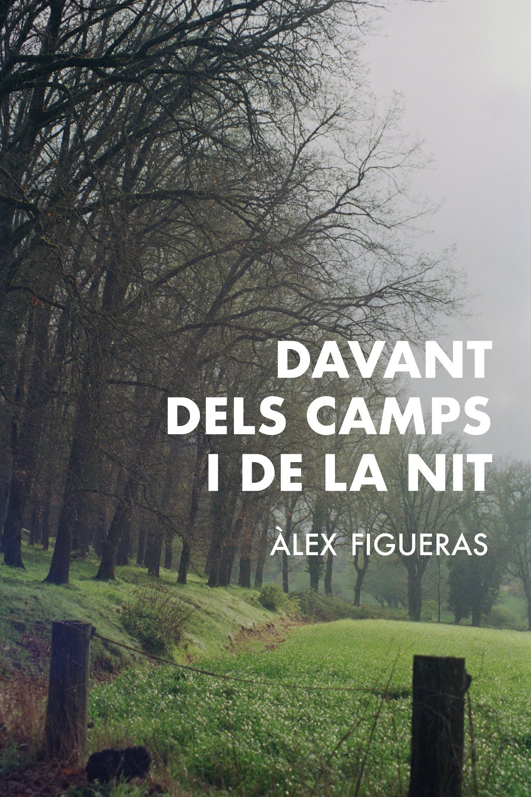 Davant dels camps i de la nit
