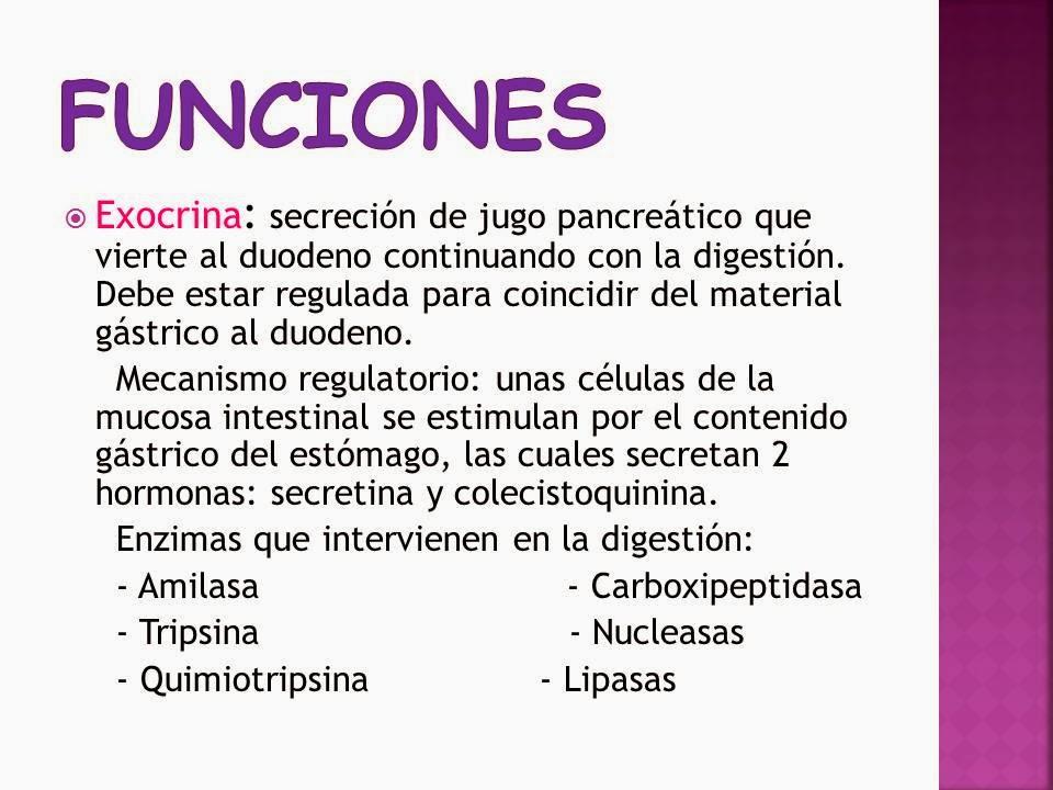 Bonito Cuáles Son La Función Del Hígado Molde - Anatomía de Las ...