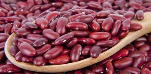 Kacang Merah