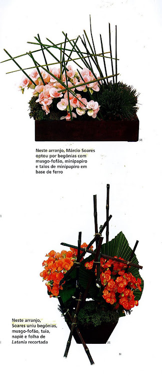 Ikebanas para Revista Editora Casa Dois