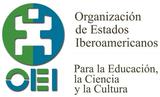 Curso masivo abierto en red (MOOC) para desarrollo profesional de docentes