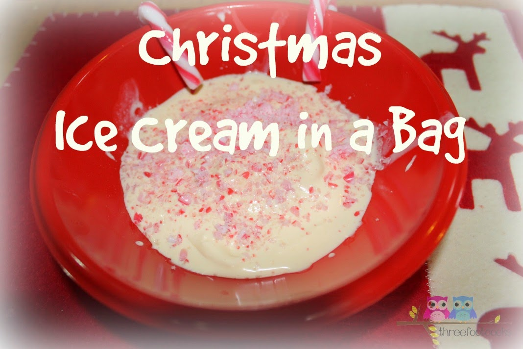 Christmas Ice Cream in a Bag