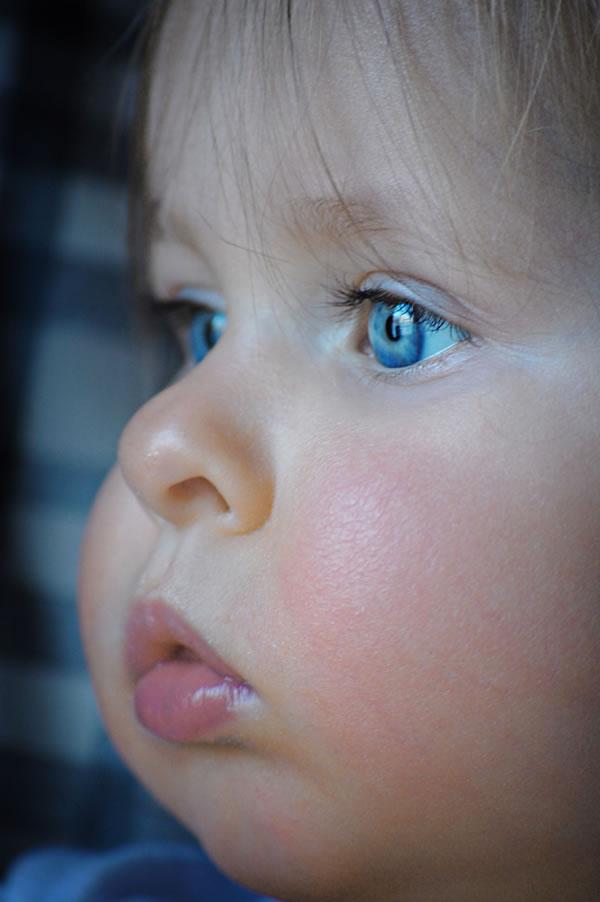 Gambar Bayi Comel Yang Popular di Internet