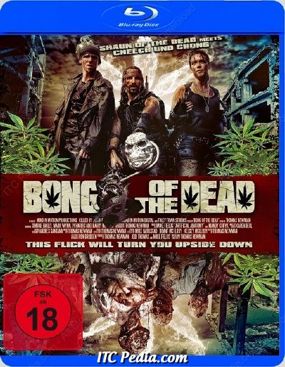 Bong of the Dead (2011) BluRay 720p x264 - Ganool