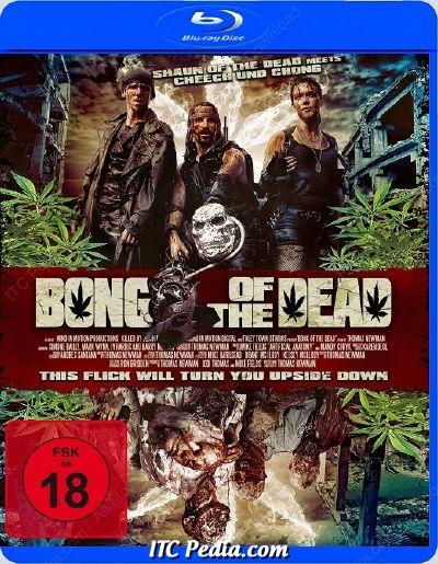Bong of the Dead (2011) BluRay 720p x264 - Ganool