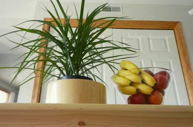 air-purifying marginata plant and bowl of fresh fruit