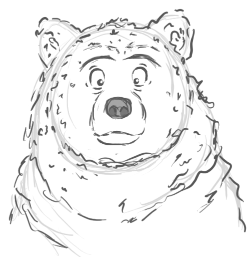 how to draw a realistic bear face