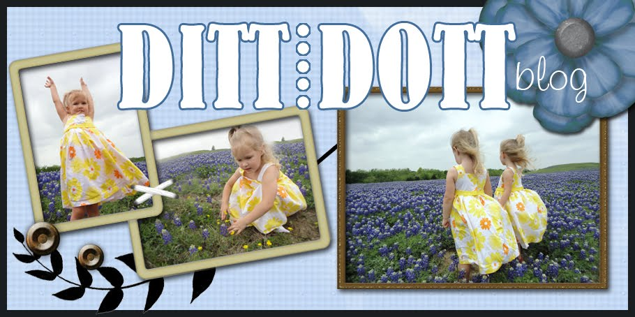 Ditt and Dott: Raising Twins