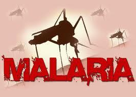 Moçambique: Mortes por malária baixaram para metade em seis anos -- PR Guebuza