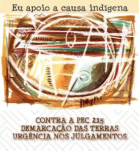 Assine o manifesto e participe da campanha em favor da CAUSA INDÍGENA!