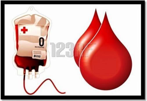 Bahaya Kurang Sel Sel Darah Merah Apa Itu Anemia