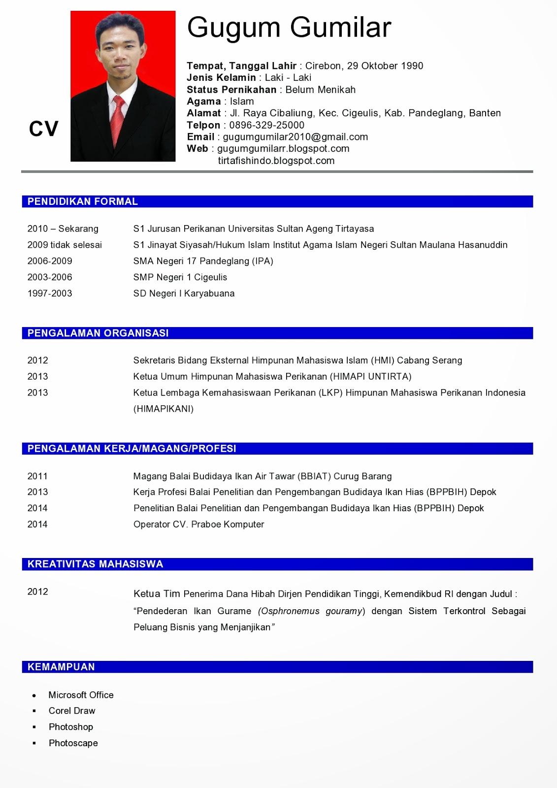 resume cv yang baik - 28 images - contoh cv curriculum vitae ...