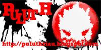 puluth banner