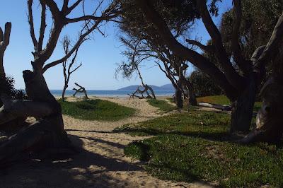 Usbackroads North Beach Campground Pismo Beach California