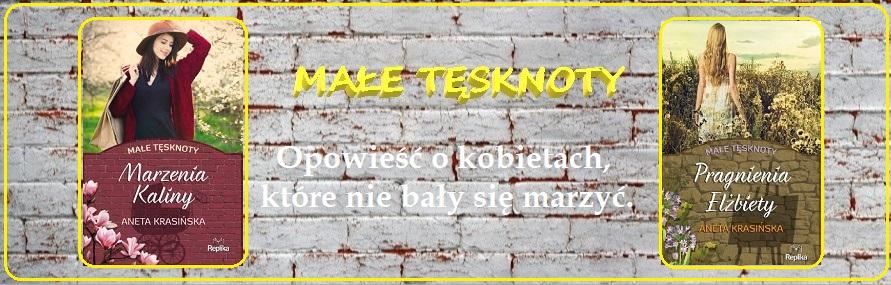 """O cyklu """"Małe tęsknoty"""" Anety Krasińskiej"""