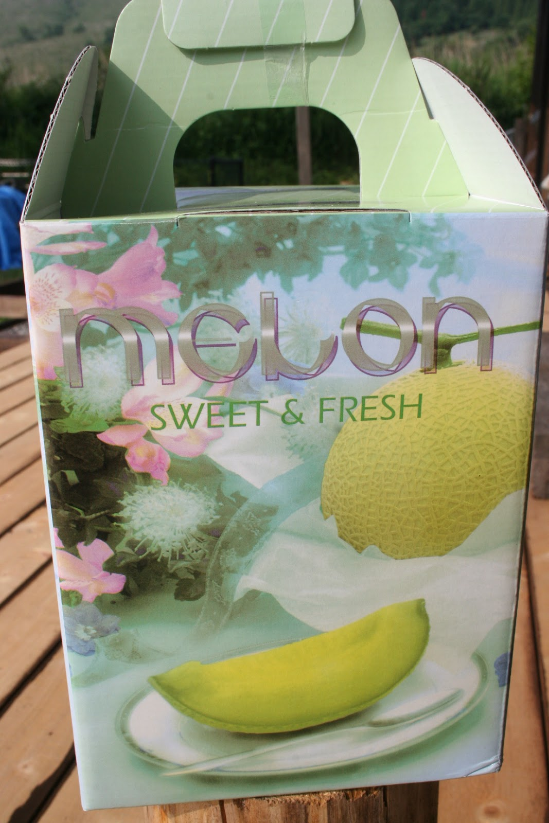 the taste of melon Try the tantalising, tropical taste of summer in this melange of melon recipes cool, sweet and refreshing melons are the taste of summer but not all melons are the same.