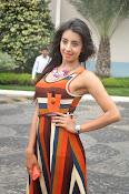 Sanjjana latest glamorous photos-thumbnail-14