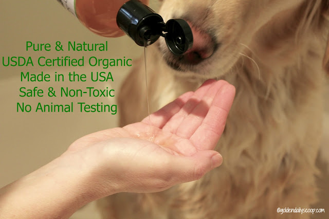 dog health, giving a dog a bath, natural and organic 4 Legger dog shampoo review giveaway