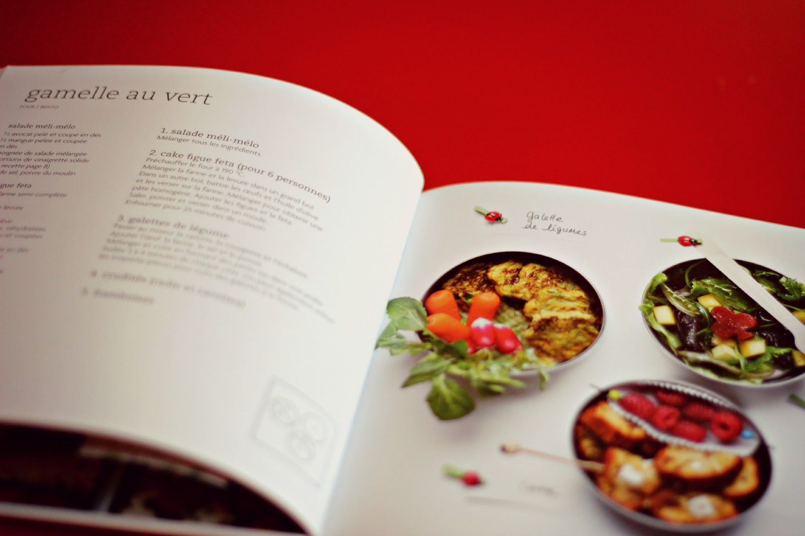 le livre de la vraie cuisine japonaise pdf