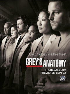 greysanatomy 01 Greys Anatomy S10E08   HDTV AVI + RMVB Legendado