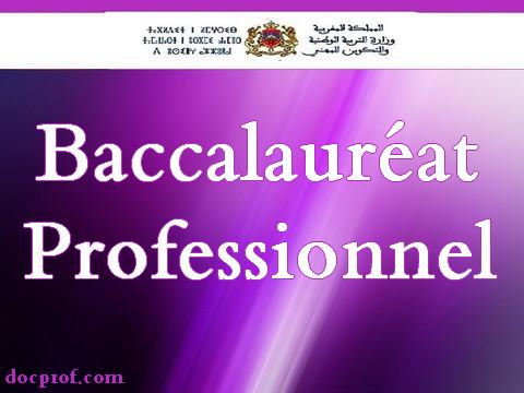 انطلاق عملية الترشيح لمتابعة الدراسة بالمسالك المحدثة بالبكالوريا المهنية