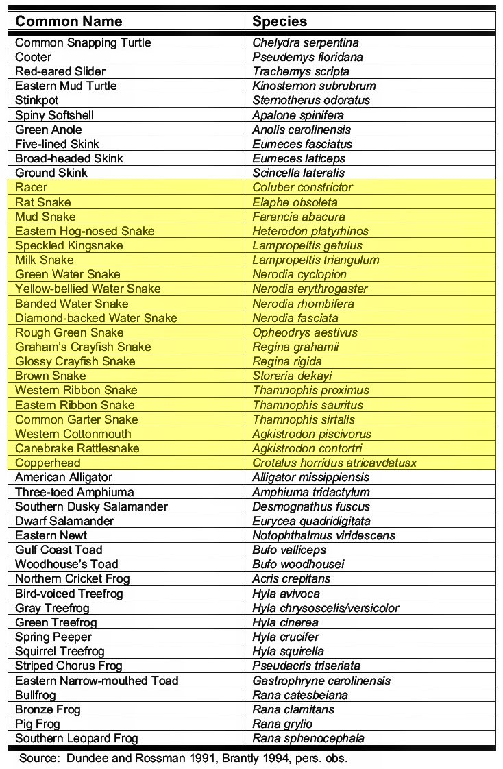 Image Gallery names of amphibians az