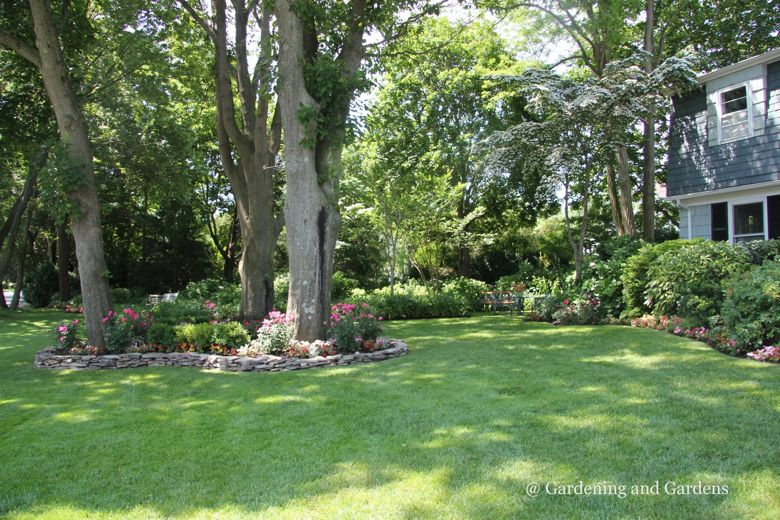 Garden ideas around trees perfect home and garden design for Landscape trees