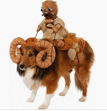 disfraces star wars, disfraces perros baratos, disfraces perros carnaval