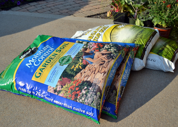 Garden soil: Wheelbarrow Planter | DIY Playbook