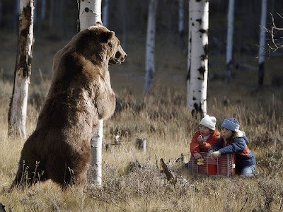 so that they learn to never make the mistake of trying to catch a bear