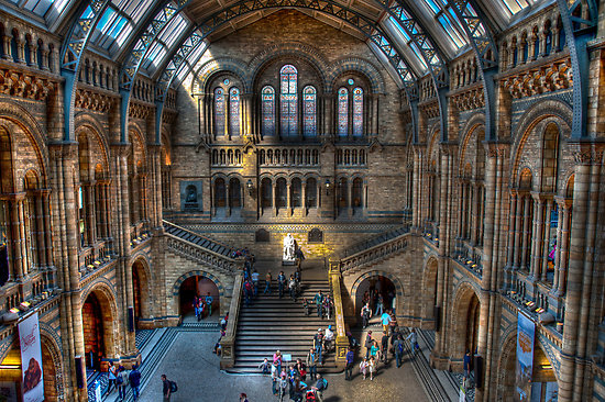 Museum Of Natural History London Ticket Prices