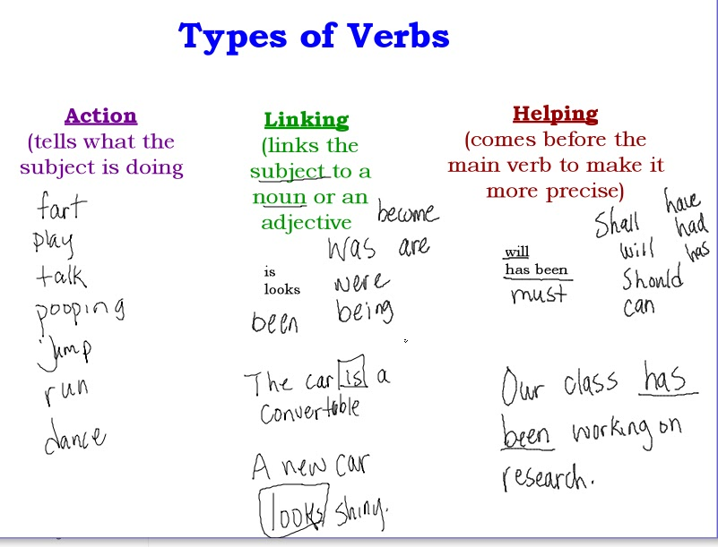 thesis classification essay