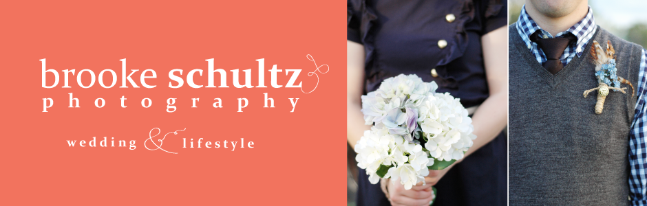Brooke Schultz Photography--Utah County Wedding and Lifestyle Photographer