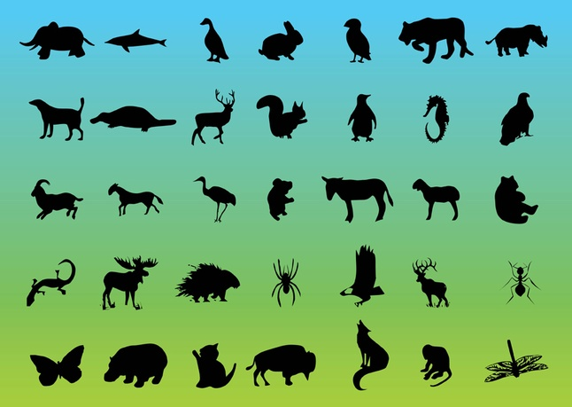 Free Graphics Wildlife Vector