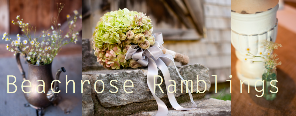 Beachrose Ramblings