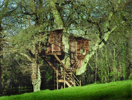 Dise o de una casita de madera en un rbol jardinitis - Jardinitis opiniones ...