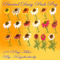 Painted daisy pack PNG tubes