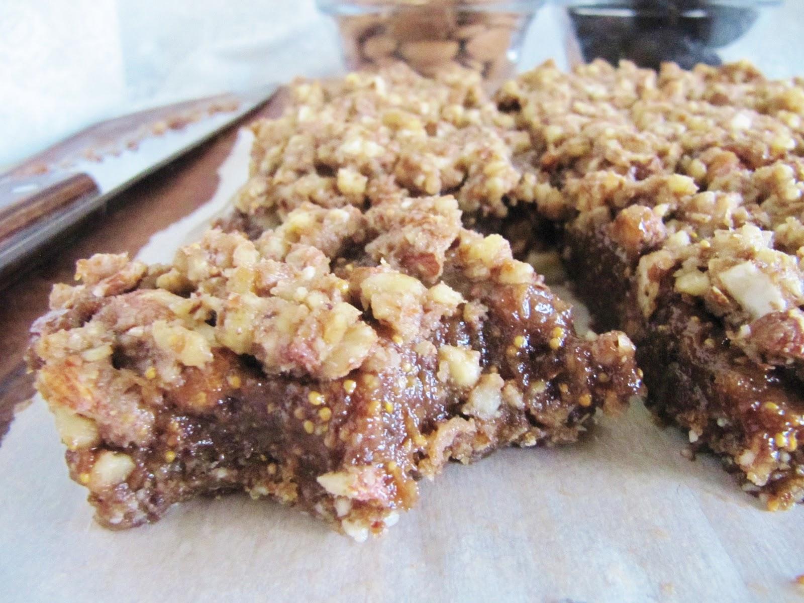 Rawesome Vegan Life: Raw Fig Bars – Shiloh Farms