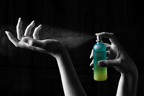 negocio+perfumes
