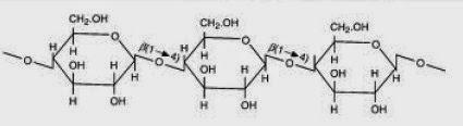 Struktur dari selulosa