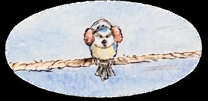 blaumeise, kinderbuchillustration