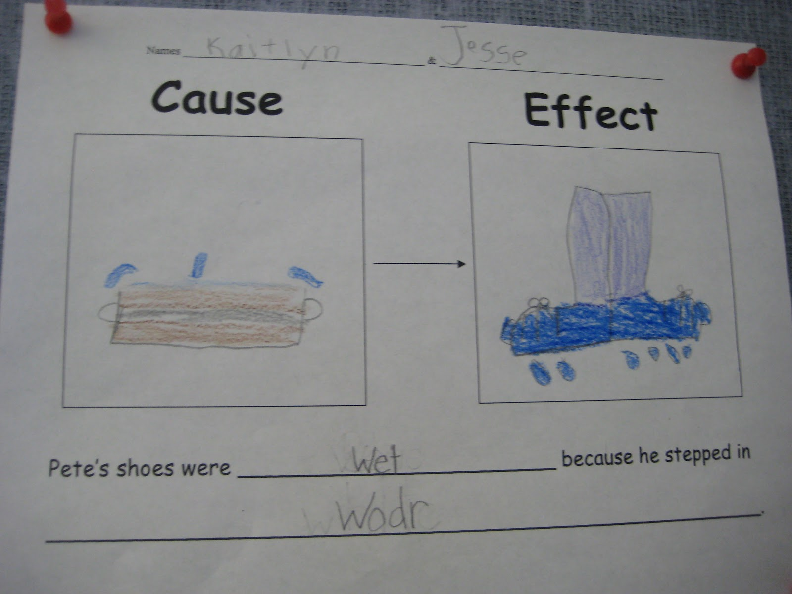 Finally In First Pete The Cat Cause Effect