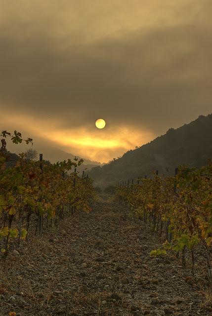 photo hdr paysage, photo vigne automne, photo hdr fabien monteil