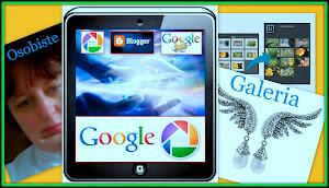 Picasa 3 Google