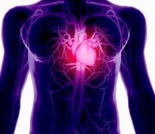 maladie+coeur