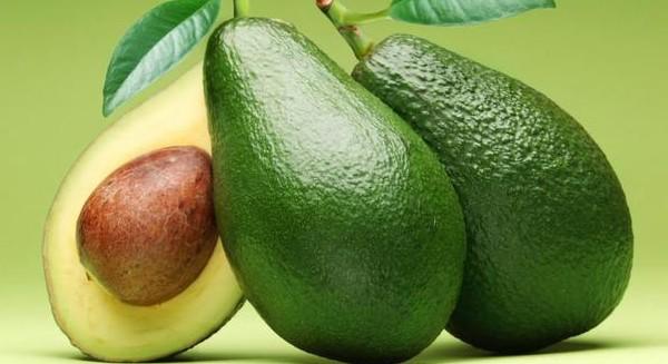 buah alpukat untuk kencing batu