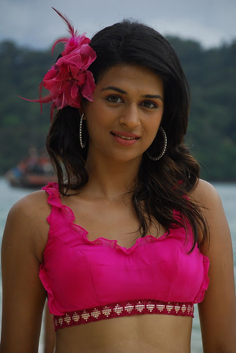 Tollywood actress shraddha das latest awesome pink…