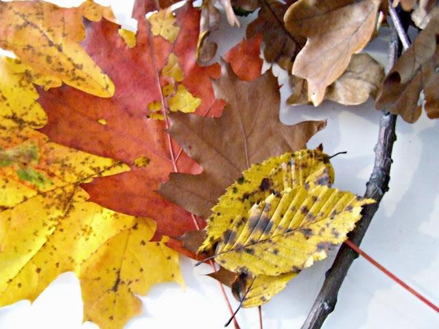 jesienne dekoracje z liści DIY