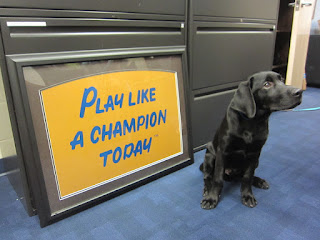 Coach is sitting next to a sign that says Play Like a Champion Today!
