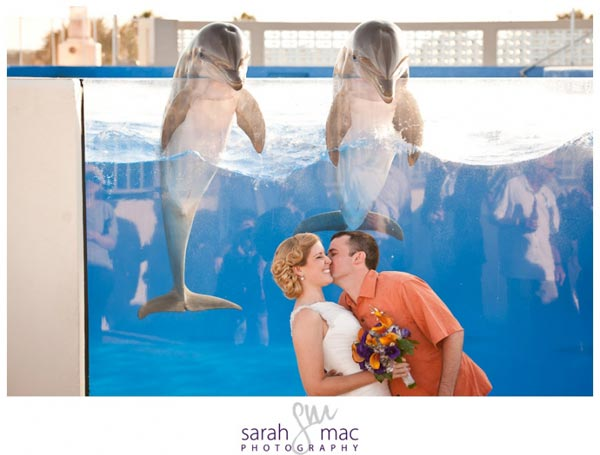 marineland wedding photo